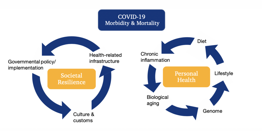 Diagram illustrating the morbidity and mortality of COVID-19 as two circles. One circle is societal resilience, and the other is personal health.