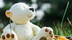 A white teddy bear sitting on a colorful blanket, looking pensively off to side with green grass and trees in the background