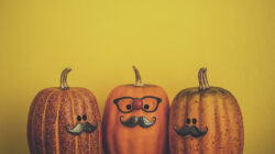 Three pumpkins with different faces, representing 3 ways to categorize using MECE